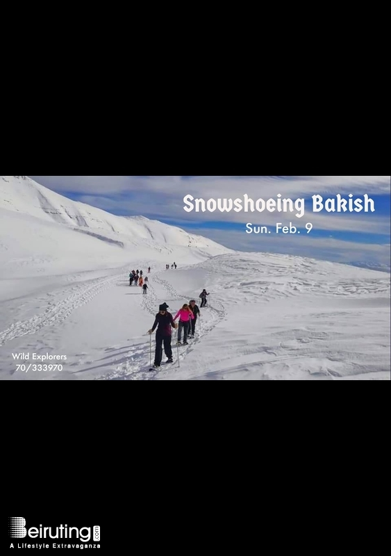 Activities Beirut Suburb Outdoor Snowshoeing Bakish - Sannine Lebanon