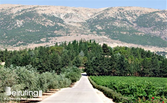 Leisure Sites Beqaa Chateau Kefraya Tourism Visit Lebanon