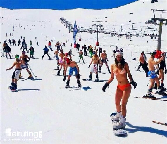 Snow in March 2014 Photo Tourism Visit Lebanon